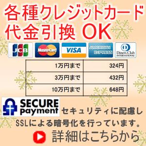 各種クレジットカード代引きOK